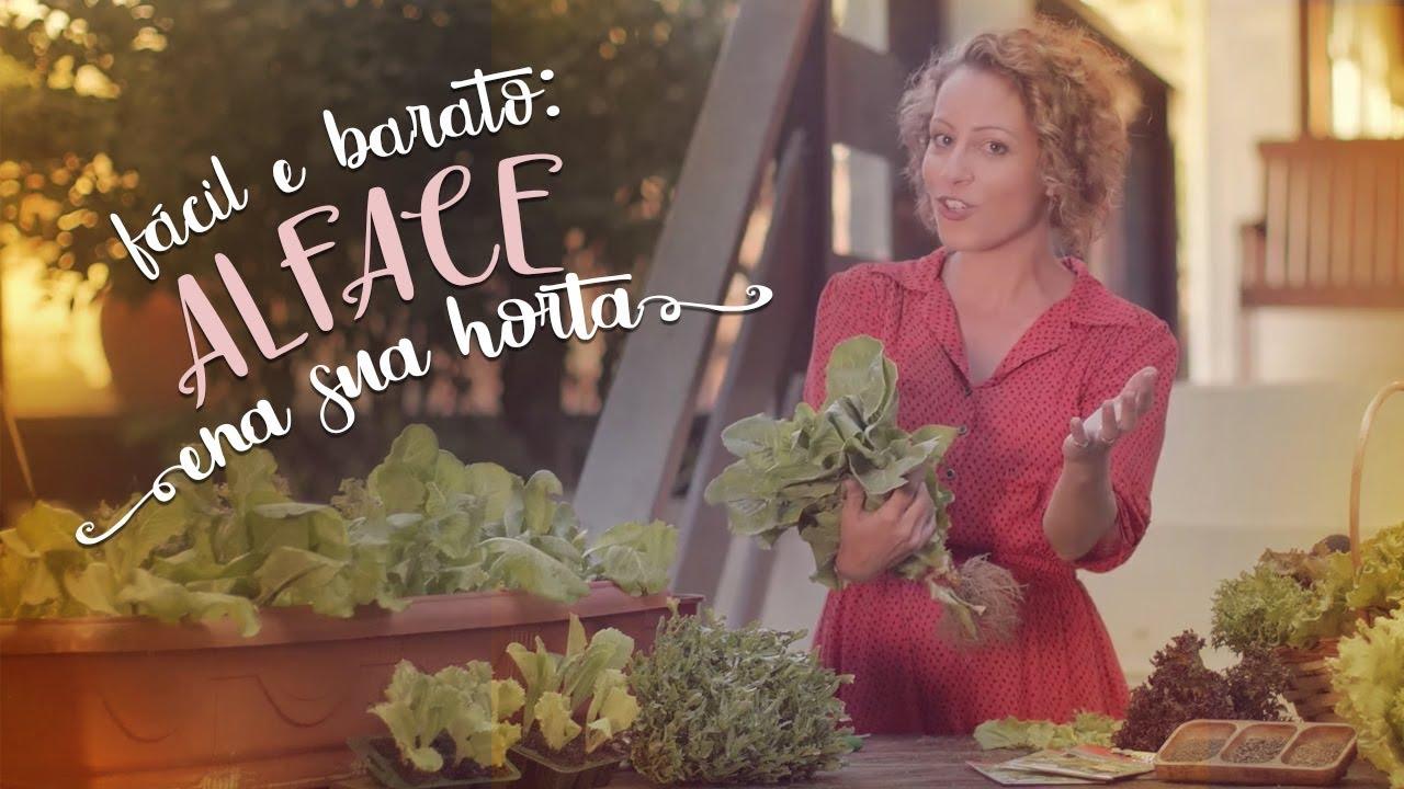 Fácil e barato: o macete que faz a alface crescer bonita