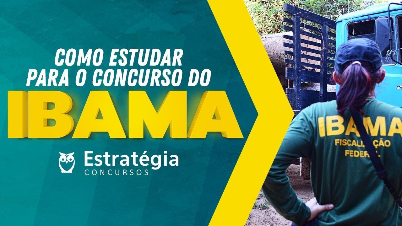 Concurso IBAMA: Como estudar para o próximo concurso?